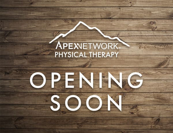 ApexNetwork PT Opening November 2019